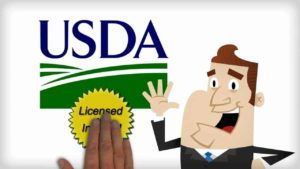 usda home loan requirements