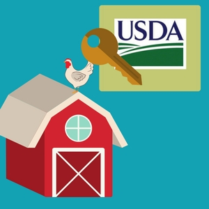 first time home buyer programs usda loans