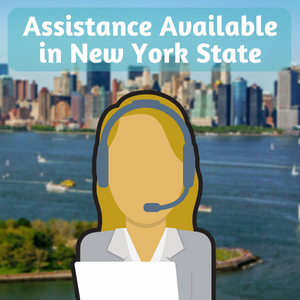 bad credit in ny state