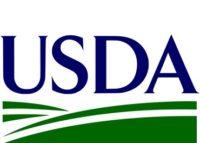California teacher home loan with bad credit USDA